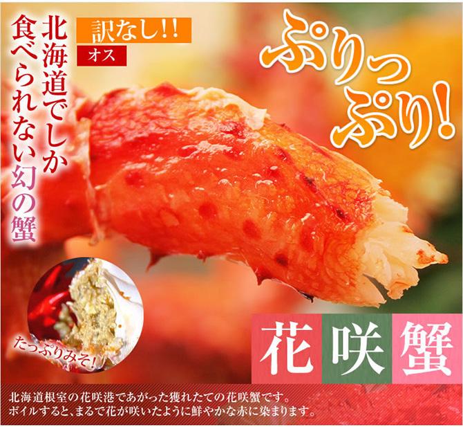 kanimamire_hanasaki
