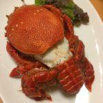 超珍しいカニのアサヒガニ。英語ではFrog Crabつまりカエルガニ