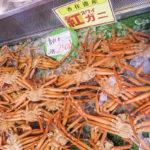日本海のベニズワイガニ。初競りで一匹6万円だとぉ!?