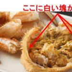 【毛蟹の衝撃】蟹味噌と白い塊を混ぜると、とんでもない旨さだった。