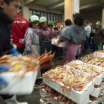 日本海のズワイガニが少子化? 今年の蟹は大丈夫か!?