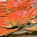 解凍するだけで美味しい本ズワイガニ〜「かにまみれ」の本ずわい蟹 浜茹で姿【2020 実食確認レポート03】